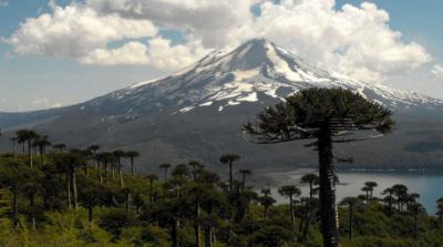 Turismo para el impulso de la Araucanía