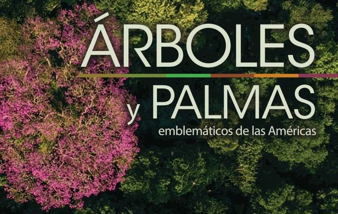 IICA y CATIE lanzan catálogo sobre árboles y palmas emblemáticas de las Américas