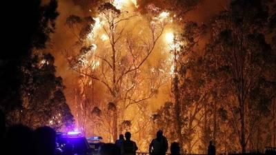 Autoridades investigan intencionalidad de 146 incendios en Galicia