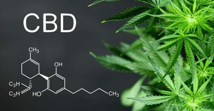 El Cannabidiol (CBD) gana terreno rápidamente como eficaz alternativa a los fármacos tradicionales