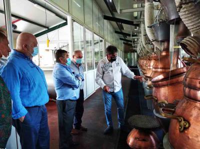 Liébana: Los elaboradores de la comarca se preparan para la vendimia