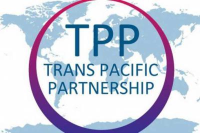 TPP11 sin consulta indígena, una vulneración de derechos humanos 1