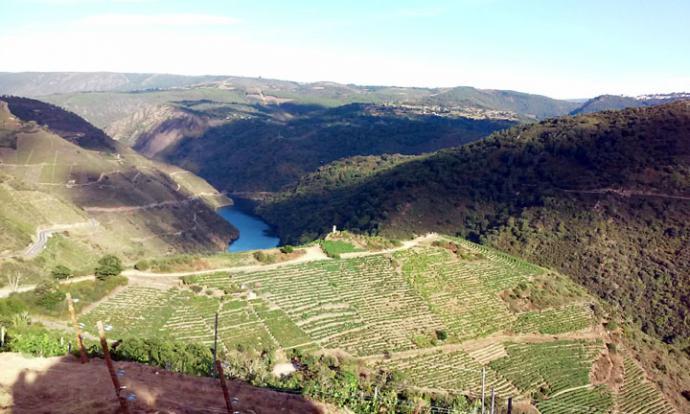 La Ribeira Sacra aspirar a ser declarada Patrimonio Mundial de la Unesco