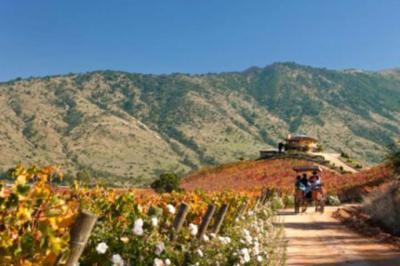 Chile promovió sus destinos en primera versión virtual de la feria TravelMart
