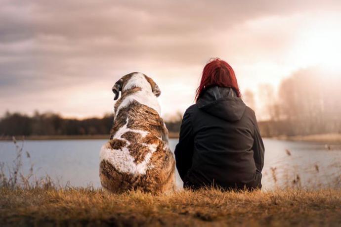 Mascotas, el mejor remedio contra la soledad