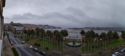 San Vicente de la Barquera: El palmeral de la zona de El Relleno cumple 45 años.