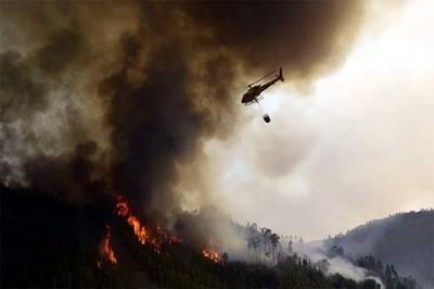 Incendio no da tregua en Portugal: ya van 64 muertos y más de 200 heridos