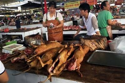 Consumidores de carne de perro defienden su fiesta en China