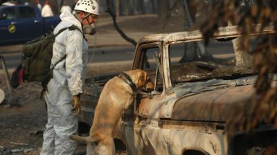 Balance de muertos por incendios en el norte de California sube hasta los 81