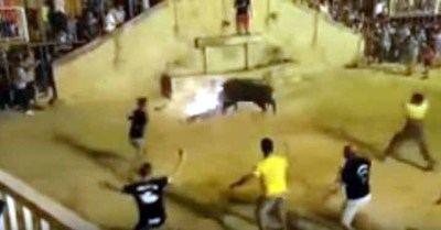 Captura de pantalla TRAMPLED: Bull charges at man - Credit: Madera