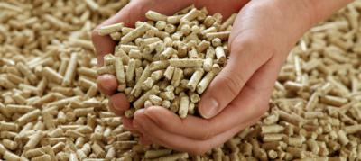 Pellets: un combustible económico y 100% ecológico