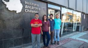 Identifican compuestos antibacterianos en restos de centollón y krill antártico