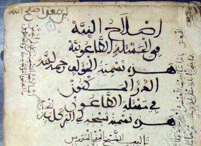 vista parcial del manuscrito