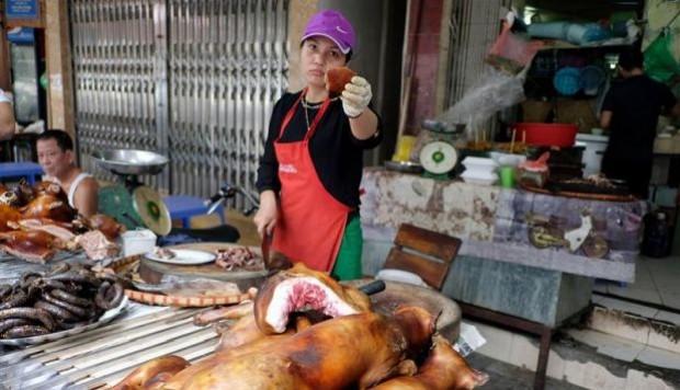 Denuncian que el comercio de carne de perro y gato expande la rabia en Asia
