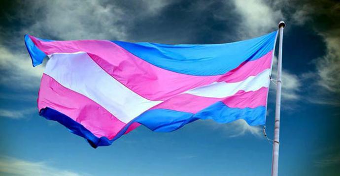 Bandera del colectivo trans.