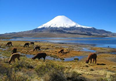 Turismo e INE presentan nueva metodología de medición del empleo en turismo