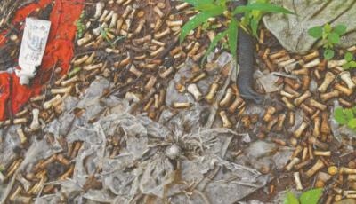 México: Hallan 2 mil fragmentos de huesos de manos en Sinaloa