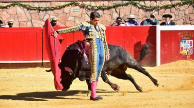 Un toro ensangrentado durante una corrida