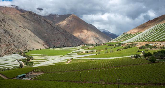 Lonely Planet elige al valle del Elqui en Chile, como un lugar imperdible de visitar en 2019