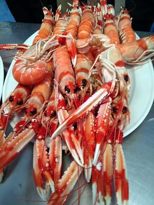 Almería, sabores de mar y montaña