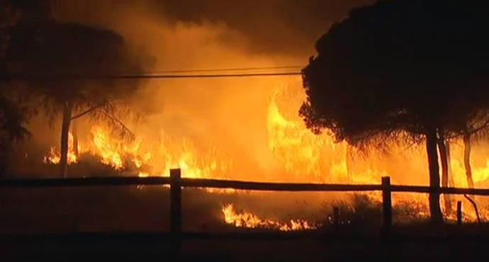 Incendios en Doñana: otra amenaza anunciada
