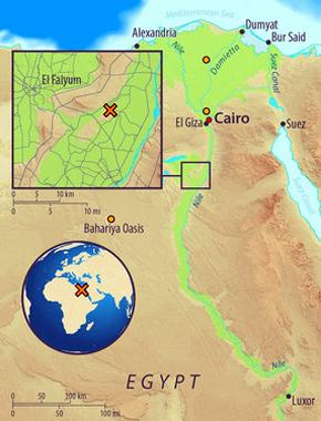 Mapa de Egipto, mostrando el sitio arqueológico de Abusir-el Meleq (marca x) y la ubicación de las modernas muestras egipcias utilizadas en el estudio (círculos naranja)
