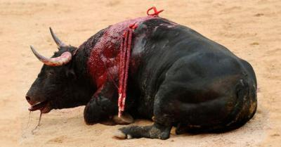 Cómo matan a un toro de lidia