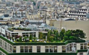 Cubiertas verdes, o cómo obtener un sinfín de ventajas de un espacio que no se utiliza