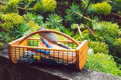 Las principales herramientas de jardinería que debemos buscar