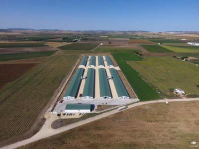Avicaribe llevará a cabo un innovador Plan Integral de Mejora Medioambiental en el Núcleo Avícola de Villamartín (Cádiz)