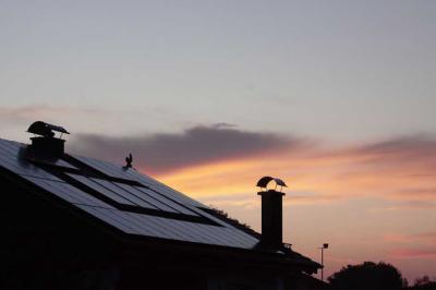 Placas solares: mitos y beneficios de las instalaciones fotovoltaicas