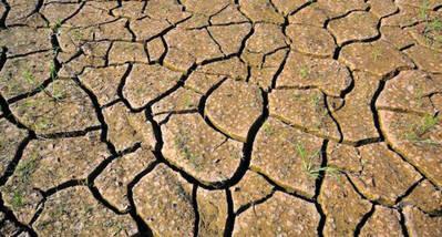 La OMS pone cifras al impacto del cambio climático en la salud