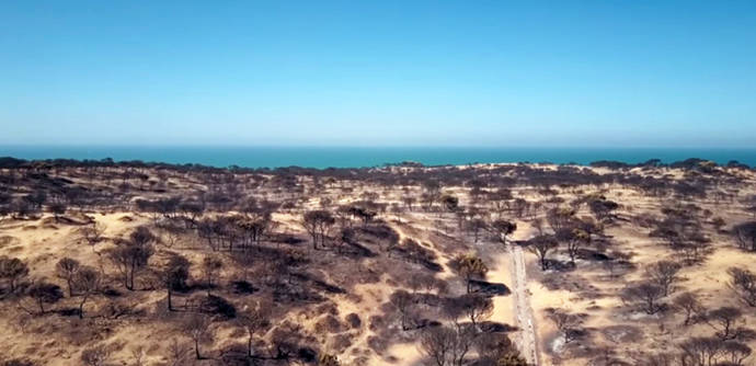 Los bomberos consiguen frenar el avance de las llamas hacia Doñana pero todavía hay riesgo