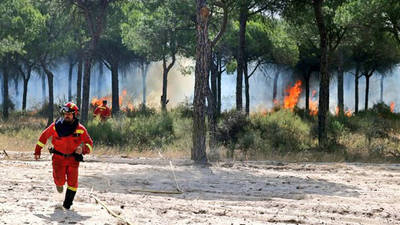El incendio de Doñana afecta al parque natural y mantiene alerta las poblaciones cercanas