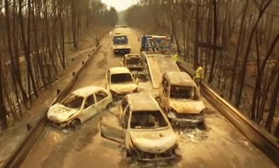 Una carretera portuguesa tras el mayor incendio que se recuerda en el país