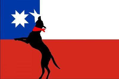 Chile: En búsqueda de nuevos símbolos