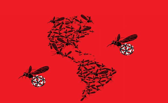 El zika pudo circular por América mucho antes de su detección en 2015