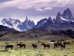 La cordillera de los Andes es la cadena montañosa más grande del planeta